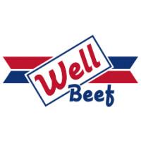 WELL BEEF 220G*30KPL